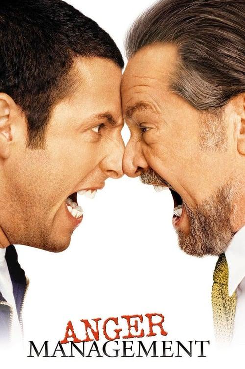 ดูหนังออนไลน์ฟรี Anger Management (2003) สูตรเด็ด เพชฌฆาตความเครียด