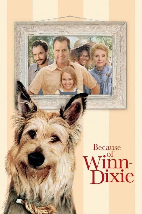 ดูหนังออนไลน์ฟรี Because of Winn-Dixie (2005) วินน์-ดิ๊กซี่ เพื่อนแท้พันธุ์ตูบ