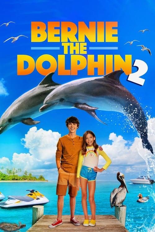 ดูหนังออนไลน์ฟรี Bernie the Dolphin 2 (2019) เบอร์นี่ โลมาน้อย หัวใจมหาสมุทร 2