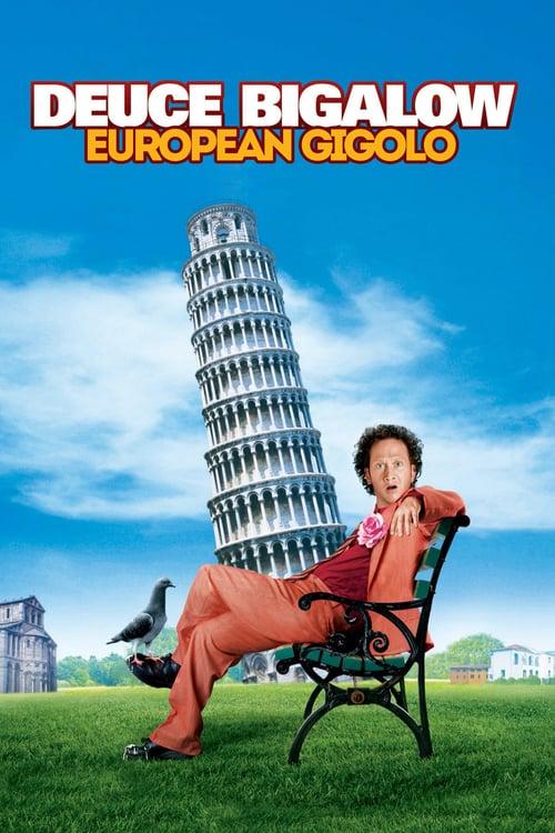 ดูหนังออนไลน์ฟรี Deuce Bigalow European Gigolo 2 (2005) ดิ๊ว บิ๊กกะโล่ ไม่หล่อแต่เร้าใจ 2