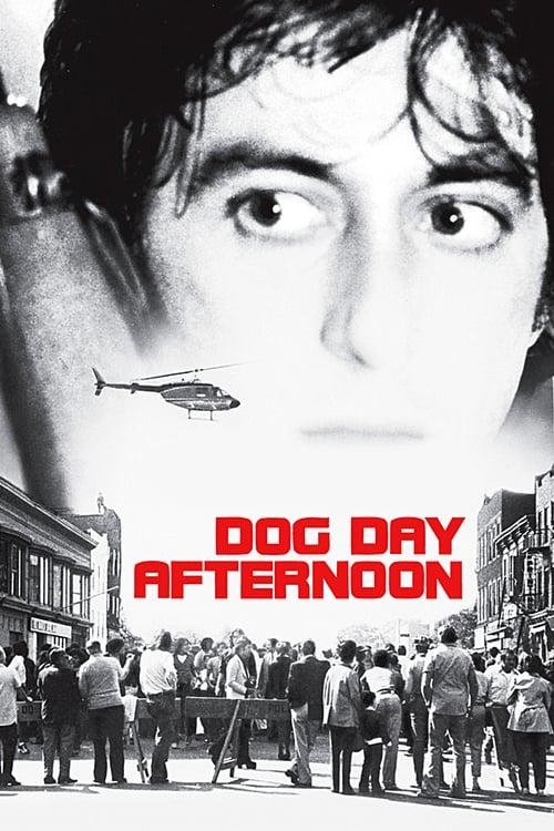 ดูหนังออนไลน์ฟรี Dog Day Afternoon (1975) ด็อก เดย์ อาฟเตอร์นูน