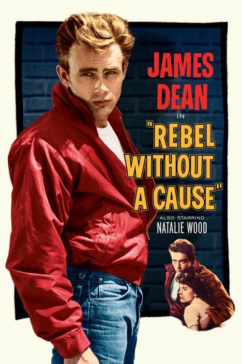 ดูหนังออนไลน์ฟรี Rebel Without A Cause (1955) กบฏที่ไร้สาเหตุ