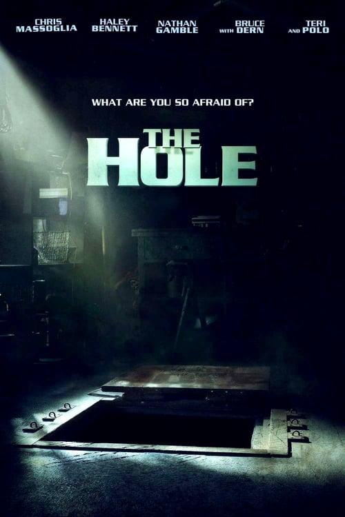 ดูหนังออนไลน์ฟรี The Hole (2009) มหัศจรรย์หลุมทะลุพิภพ