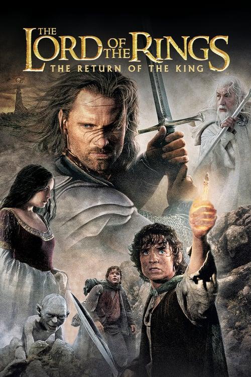 ดูหนังออนไลน์ฟรี The Lord Of The Rings The Return Of The King Extended Edition (2003) เดอะลอร์ดออฟเดอะริงส์: มหาสงครามชิงพิภพ