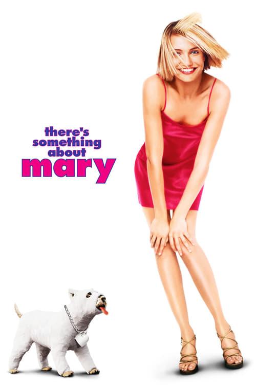ดูหนังออนไลน์ฟรี There's Something About Mary (1998) มะรุมมะตุ้มรุมรักแมรี่