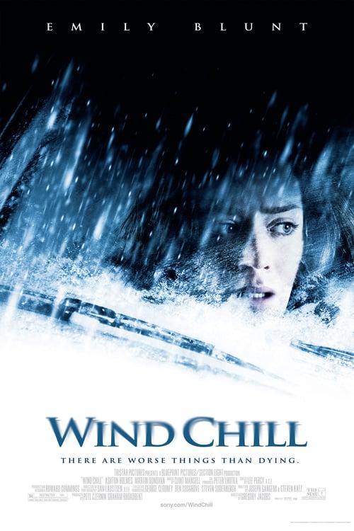 ดูหนังออนไลน์ฟรี Wind Chill (2007) คืนนรกหนาว