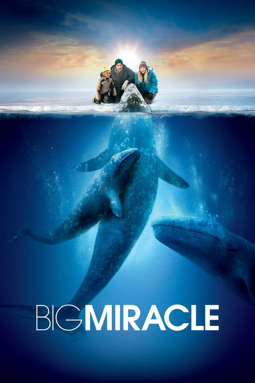 ดูหนังออนไลน์ Big Miracle (2012) ปาฏิหาริย์วาฬสีเทา