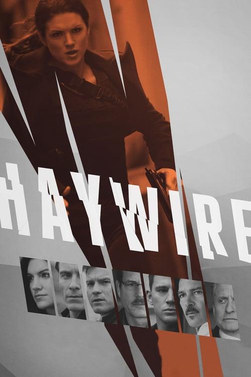 ดูหนังออนไลน์ฟรี Haywire (2011) เธอแรง หยุดโลก
