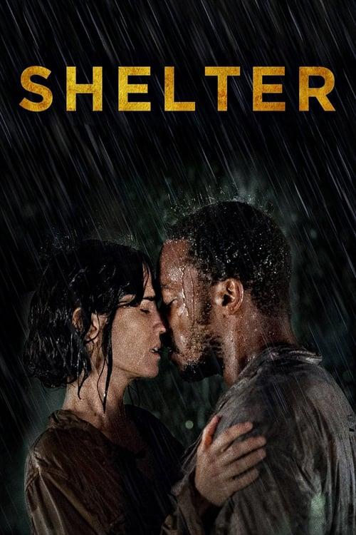 ดูหนังออนไลน์ฟรี Shelter (2014) คืนเหงา เราสอง