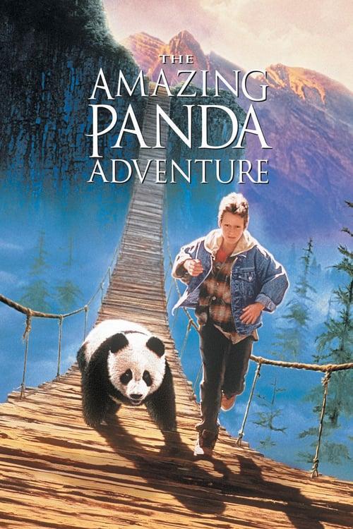 ดูหนังออนไลน์ The Amazing Panda Adventure (1995) แพนด้าน้อยผจญภัยสุดขอบฟ้า