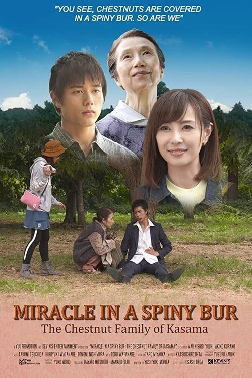 ดูหนังออนไลน์ฟรี Miracle In Kasama (2018)