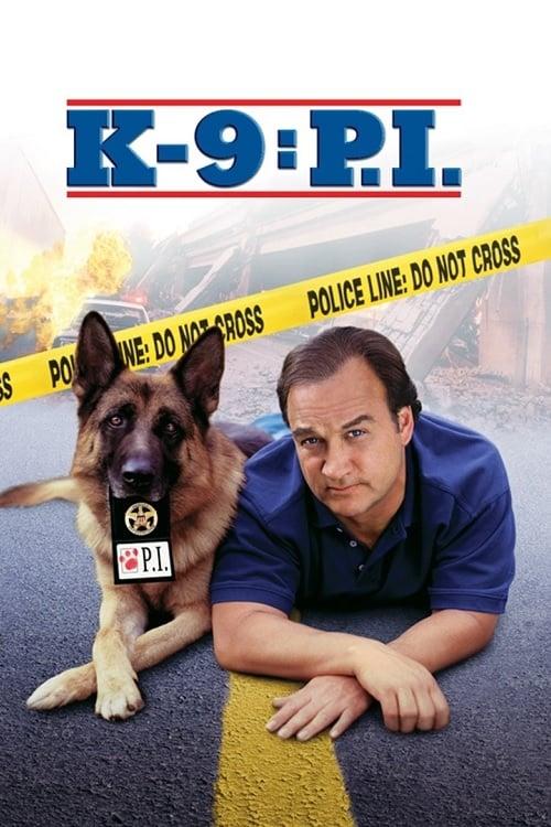 ดูหนังออนไลน์ [NETFLIX] K-9 P.I. (2002)
