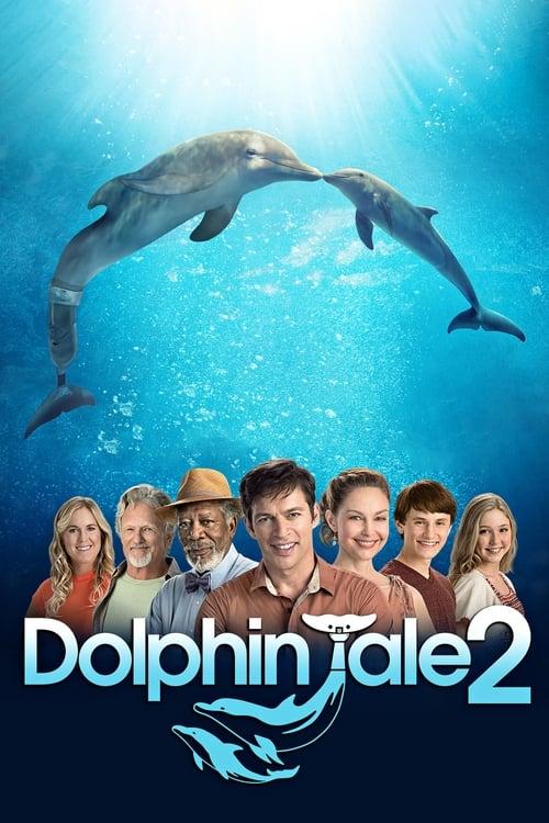 ดูหนังออนไลน์ Dolphin Tale 2 (2014) มหัศจรรย์โลมาหัวใจนักสู้ 2