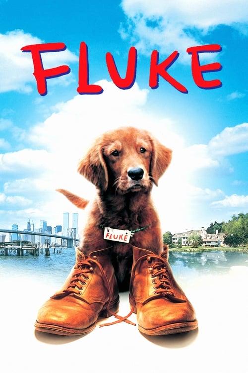 ดูหนังออนไลน์ FLUKE (1995)