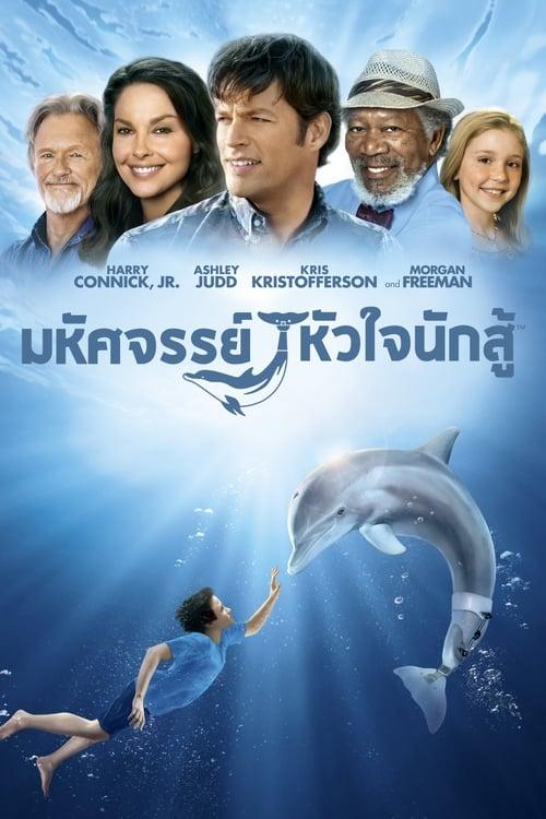 ดูหนังออนไลน์ [NETFLIX] Dolphin Tale (2011) มหัศจรรย์โลมาหัวใจนักสู้