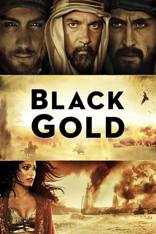 ดูหนังออนไลน์ Black Gold (2011) แบล็ค โกลด์ ล่าขุมทองดับตะวัน
