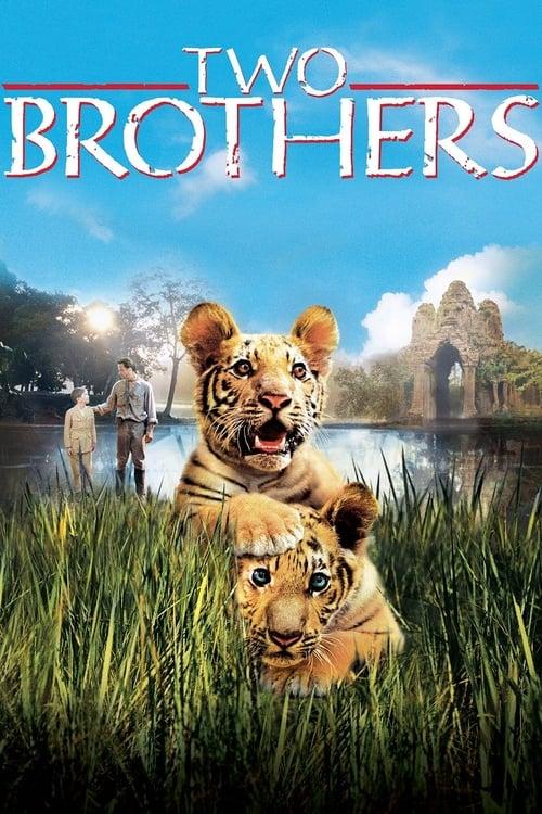 ดูหนังออนไลน์ฟรี Two Brothers (2004) พี่น้องสองเสือ